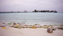 stock.creativepictures.cz.maldives.beach.15006